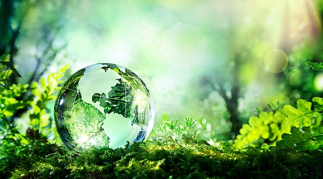 Legrand, 5 Haziran Dünya Çevre Günü'nde elektrik tüketimine dikkat çekiyor